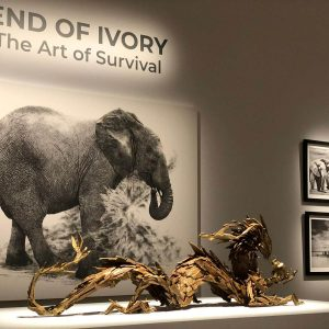 Bronze sculpture of a bronze dragon holding an elephant up to the dragon's face part of the End of Ivory Exhibition in Los Angeles 2019