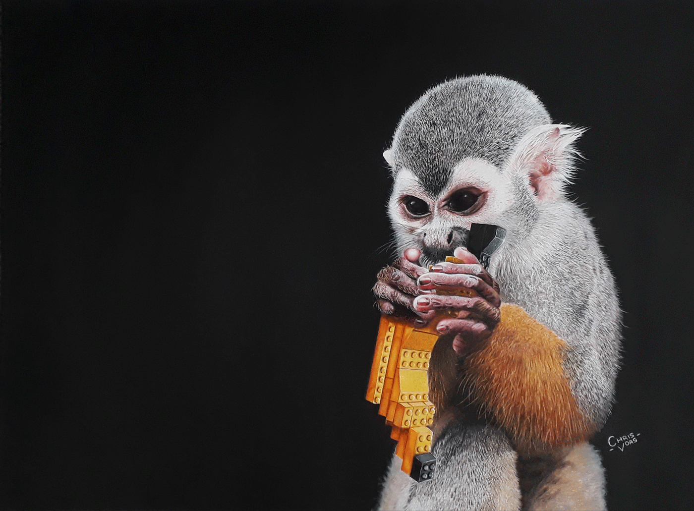 Wildlife Artist of the Year 2020 competition entry - 'Evolution' in Coloured Pencil and Pen