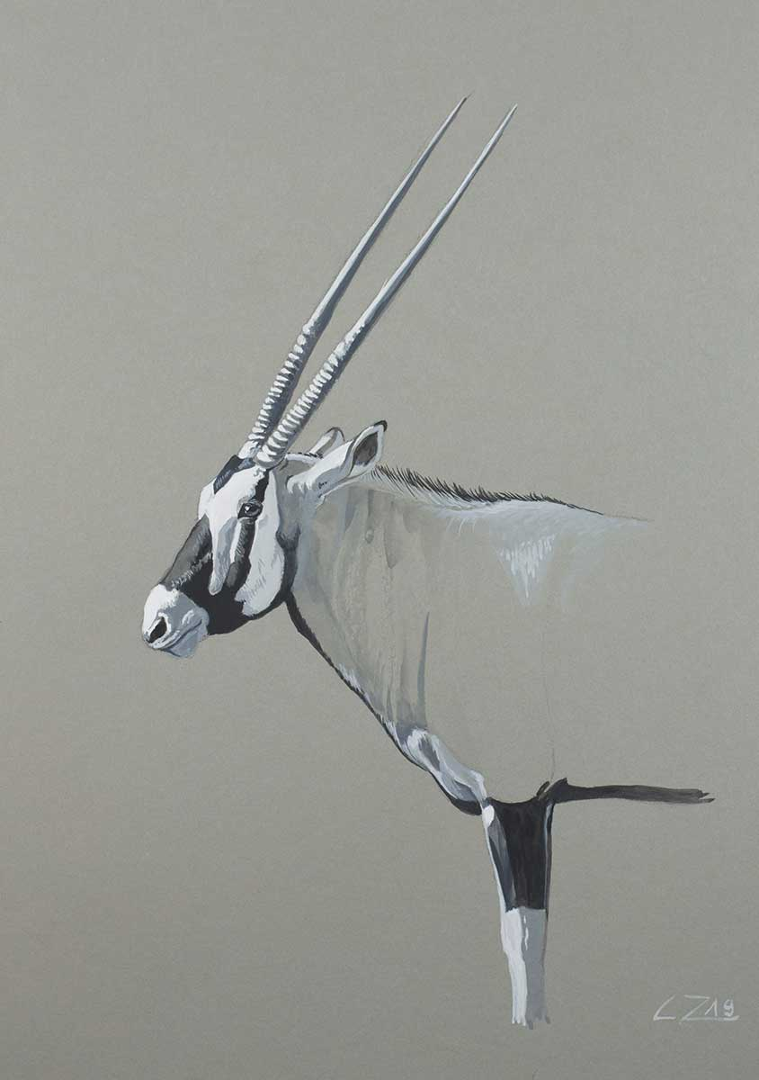 Wildlife Artist of the Year 2020 competition entry, Gazelle in Gouache
