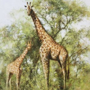 David Shepherd Limited Edition - Giraffe Print