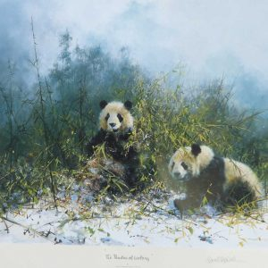 David Shepherd, Limited Edition - Panda's Print