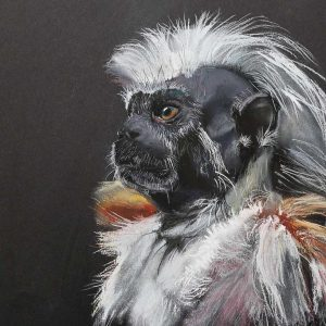 Wildlife Artist of the Year 2020 competition entry - Primate in Pastel