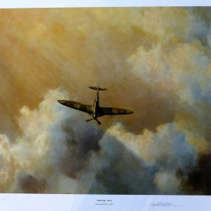David Shepherd, Limited Edition - Airplane Print