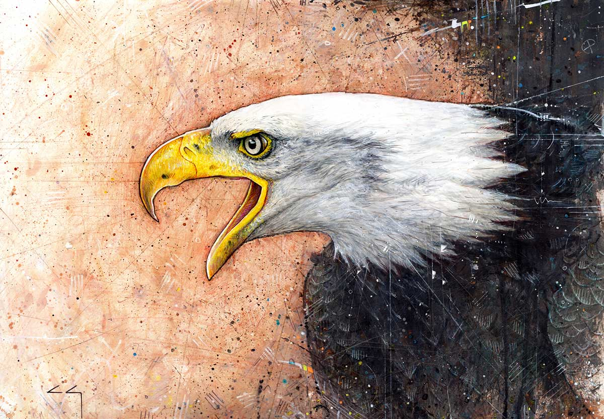Bald Eagle mixed media painting entry in Wildlife Artist of the Year 2020