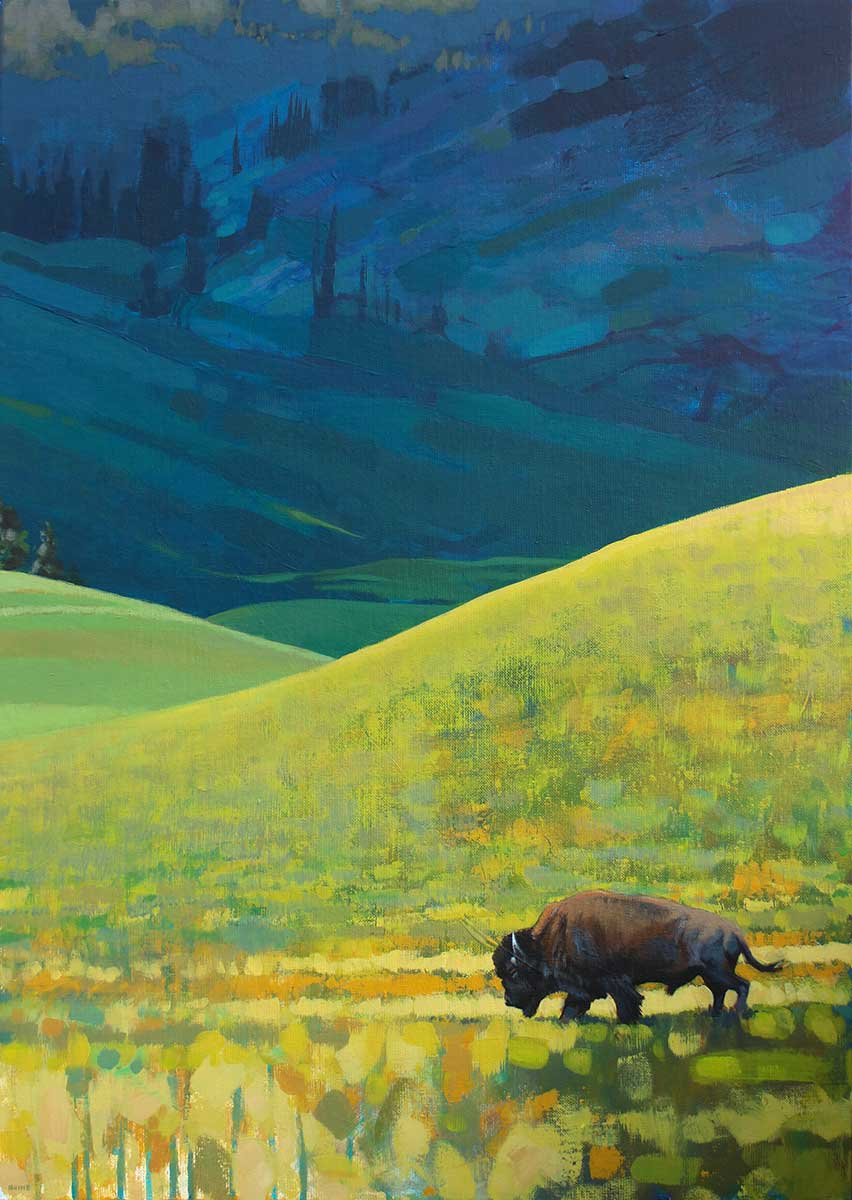 Bison acrylic painting entered in Wildlife Artist of the Year 2020