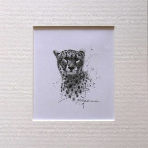 Buy a print of a David Shepherd pencil sketch of a Cheetah
