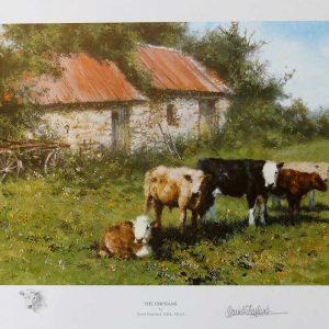 David Shepherd, Limited Edition - Cows Print