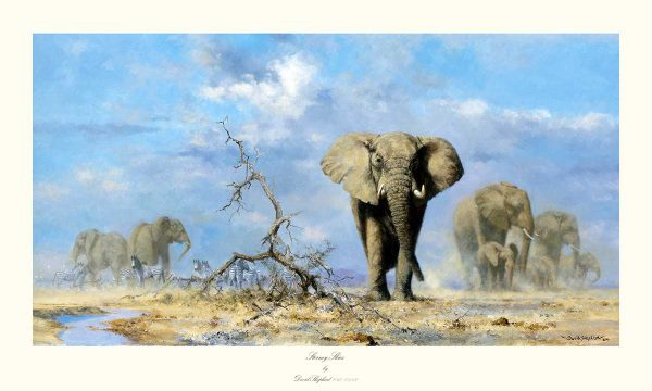 David Shepherd, Mounted Limited Edition - Elephant Print