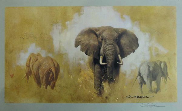 David Shepherd, Limited Edition - Elephant Print, part of The Big Five Series