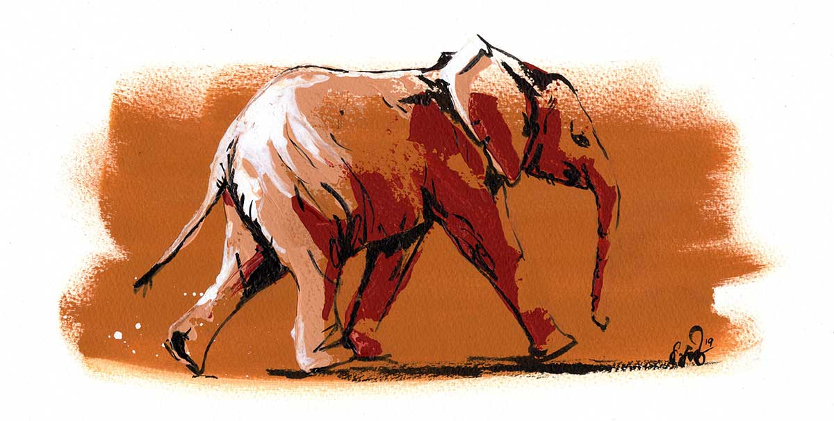 Wildlife Artist of the Year 2020 competition entry - Elephant in Acrylic