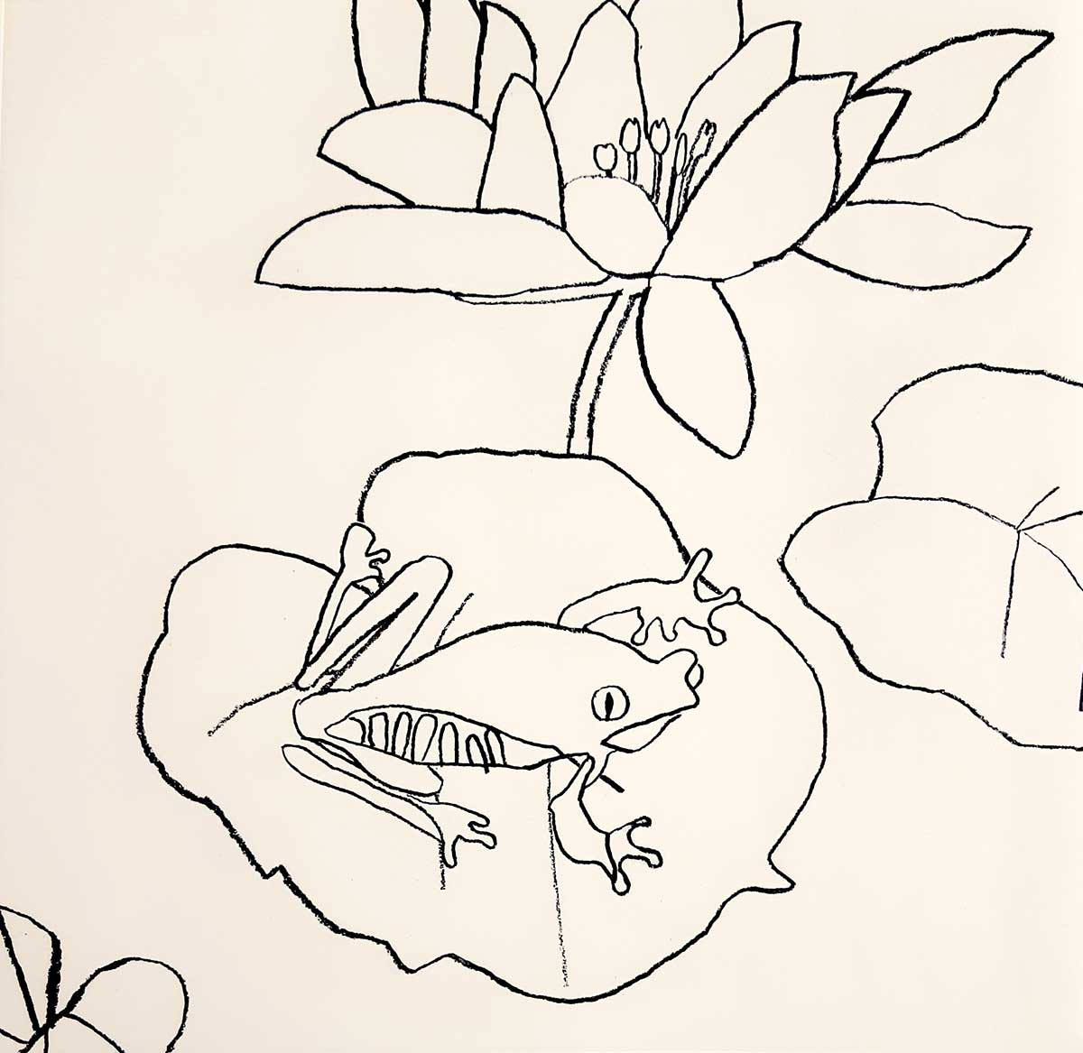 Frog Etching entered in Wildlife Artist of the Year 2020