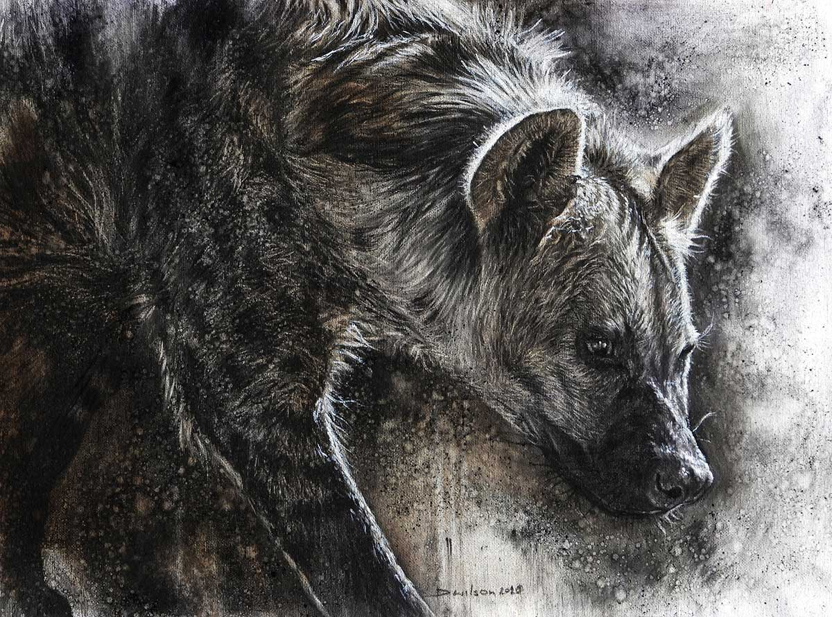 Hyena in charcoal and acrylic entered in Wildlife Artist of the Year 2020