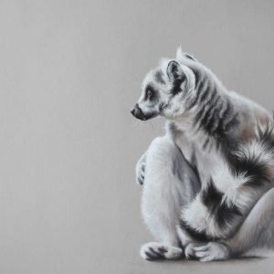 Wildlife Artist of the Year 2020 competition entry - Lemur in Pastel