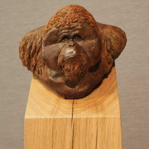 Orangutan bronze and oak sculpture entered Wildlife Artist of the Year 2020