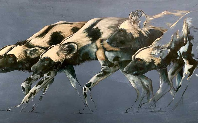 Wildlife Artist of the Year 2020 competition entry - Painted Dog, Oil on Board