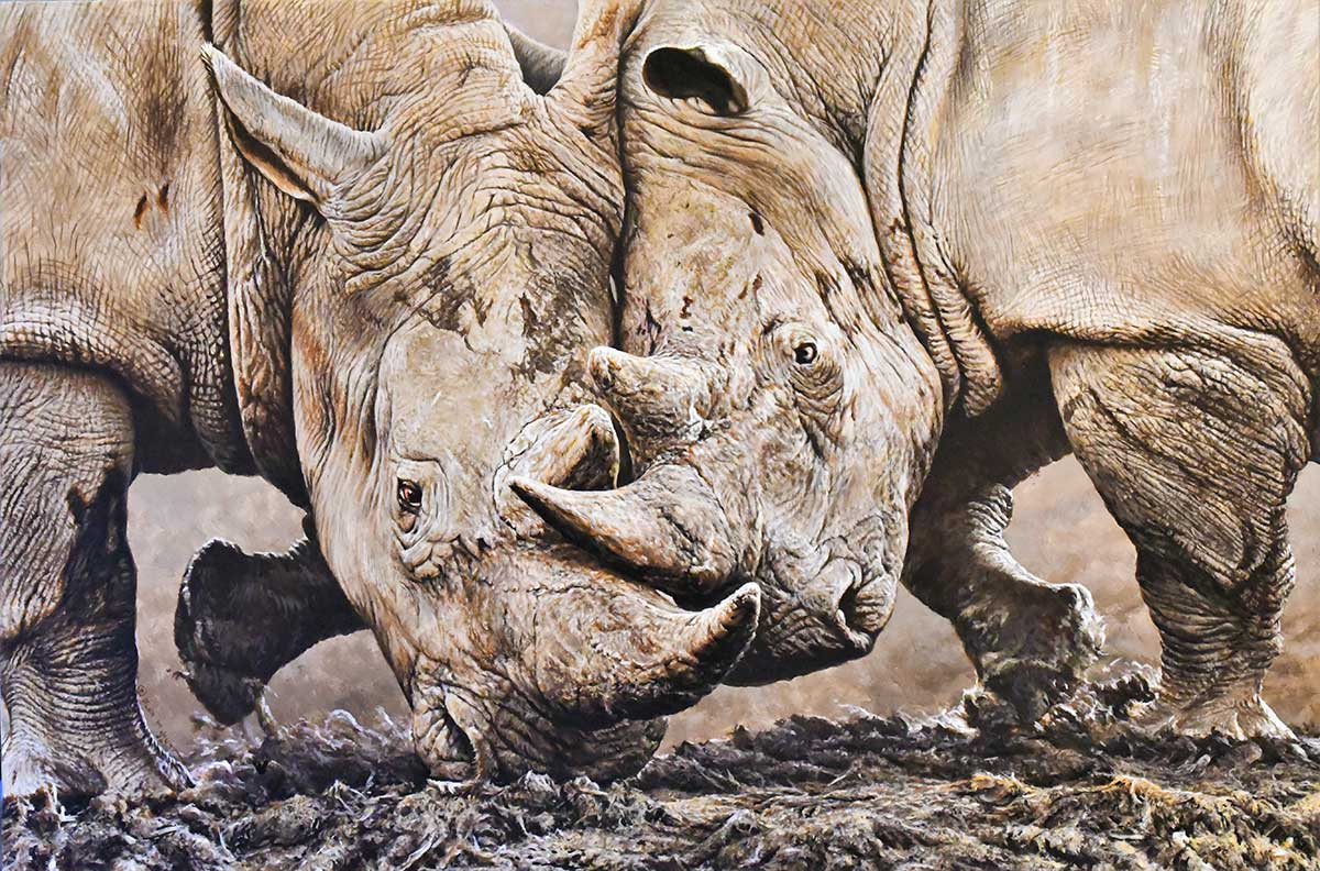 Rhino acrylic painting entered Wildlife Artist of the Year 2020