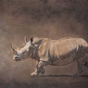 Rhino pastel pencil entered Wildlife Artist of the Year 2020