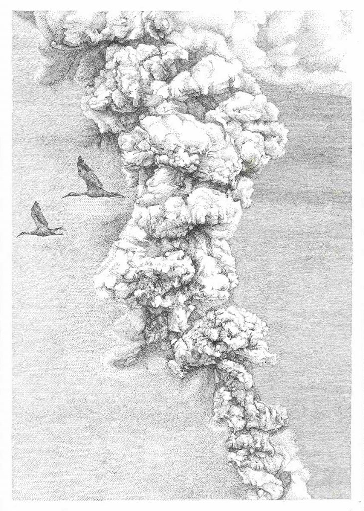 Smoke pen and ink entry into Wildlife Artist of the Year 2020