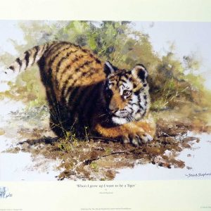David Shepherd Open Edition - Tiger Print