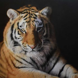 Tiger oil on wood entry in Wildlife Artist of the Year 2020
