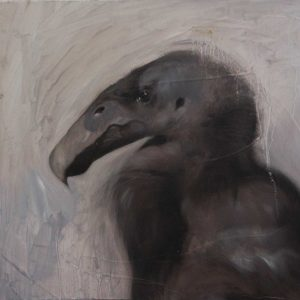 Vulture oil painting entry into Wildlife Artist of the Year 2020