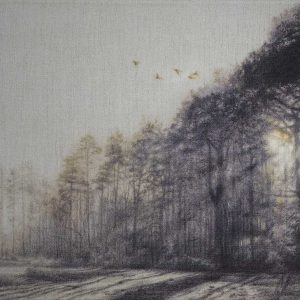 Woods in biro entry in Wildlife Artist of the Year 2020