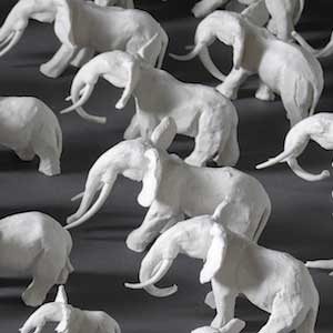 Elephants made by Charlotte Pack in ceramic