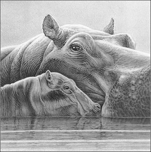 Buy this unique embellished Hippo pencil artwork by Gary Hodges in aid of conservation