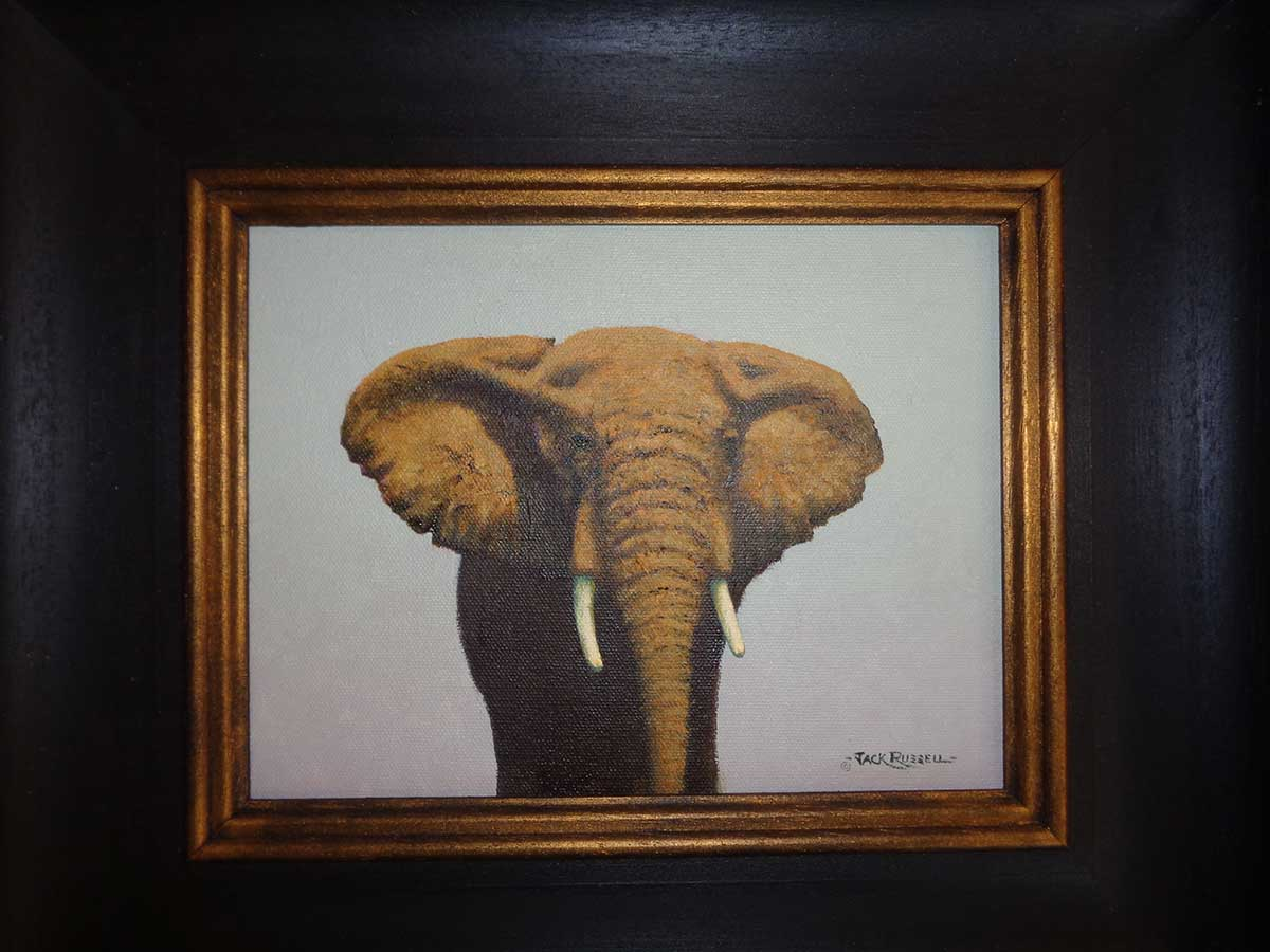Elephant oil painting by English cricketer Jack Russel