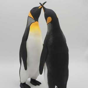 Two penguins black, white and yellow shades
