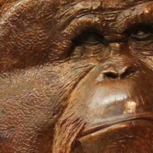 Face of a primate in bronze and wood