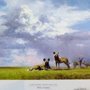 Painted dogs, print by David Shepherd