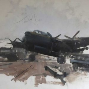 Airplane, oil on canvas by David Shepherd