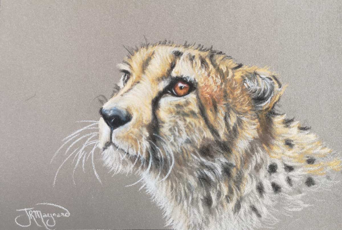 Postcard size painting of a cheetah's head