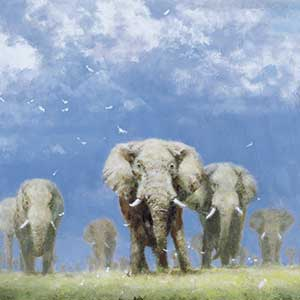 elephant painting by david shepherd