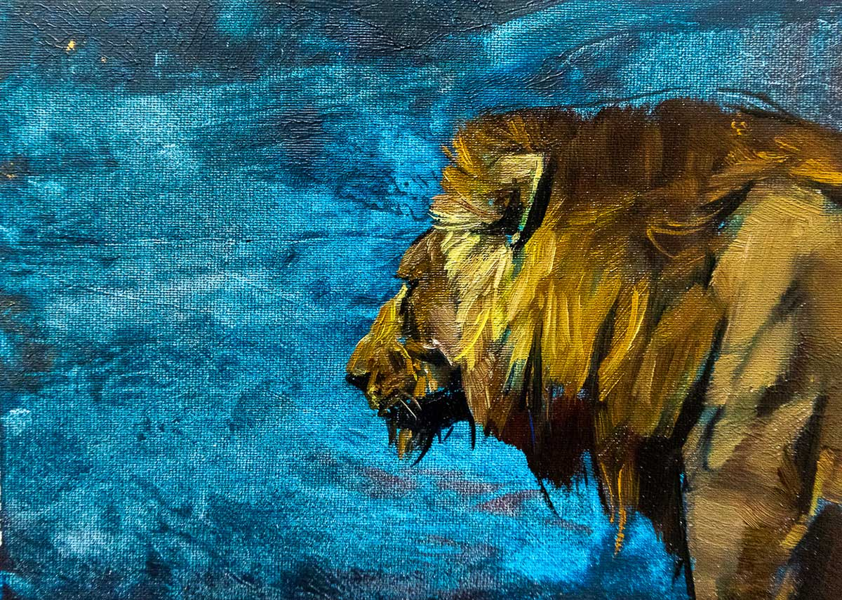 Head and shoulders of a male lion on vibrant blue background postcard sized painting by Emily Lamb