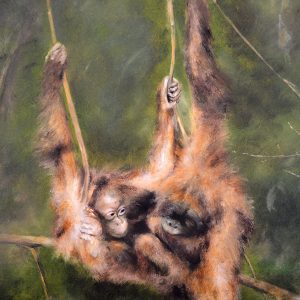 Orangutan, mixed media by Mandy Shepherd