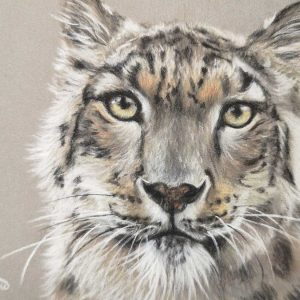 Painting of a snow leopard's head facing forward