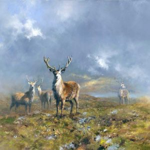 David Shepherd, Stag, oil on canvas