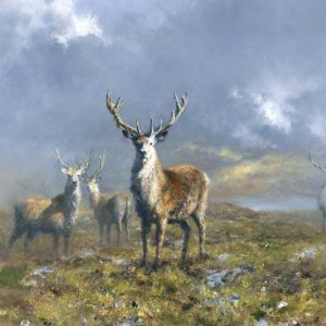 stags of ranoochmore painting