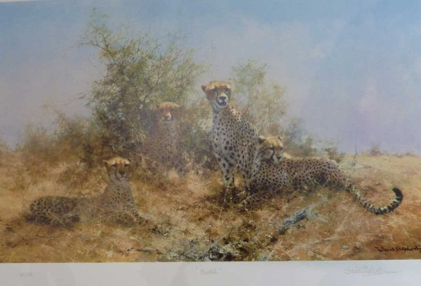 Buy this silkscreen limited edition by David Shepherd in aid of conservation
