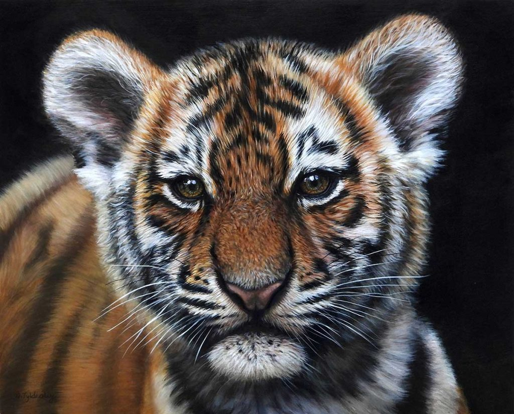 painting of a tiger by Amber Tyldesley