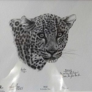 Buy this print by Jonathan Truss in aid of conservation