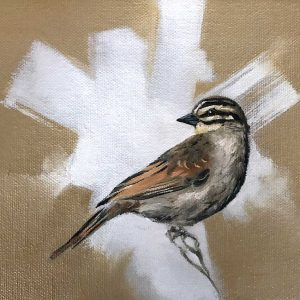 Cape bunting oil artwork by Joni-Leigh Doran