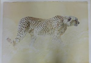 Buy this print by Leigh Voight in aid of conservation
