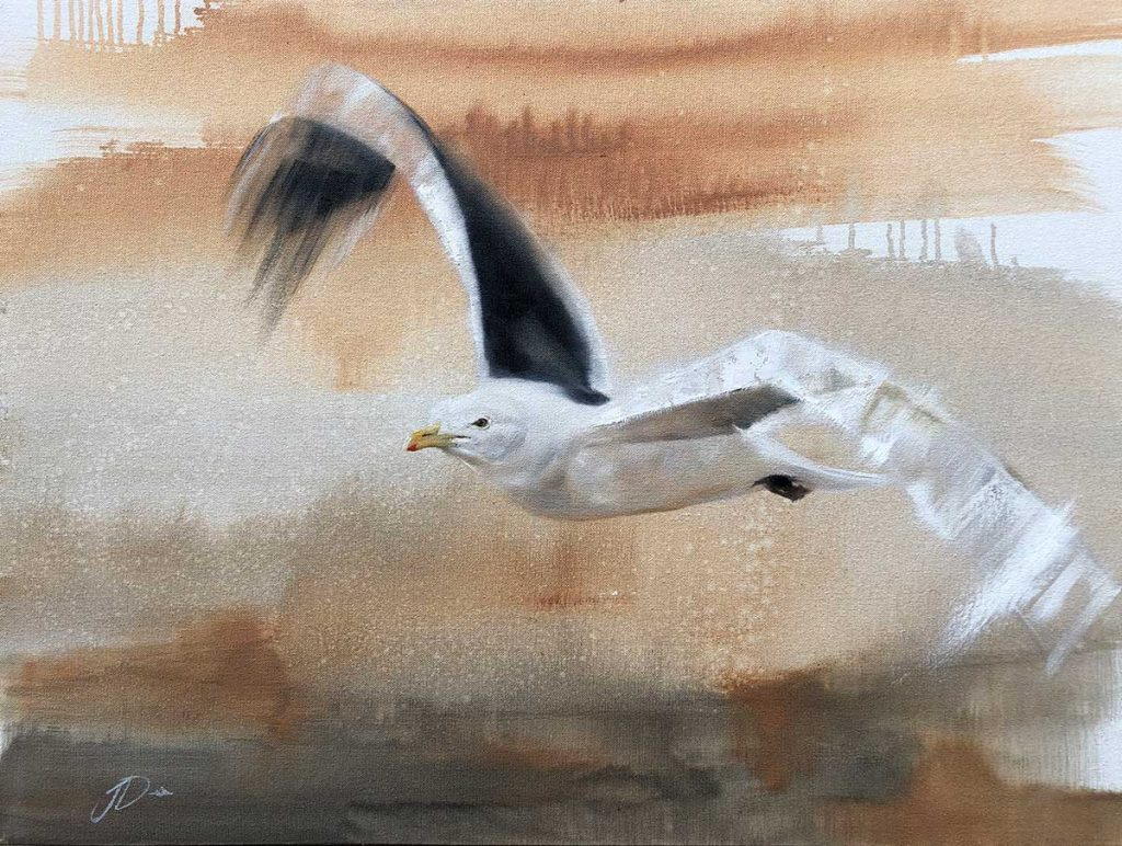 seagull artwork by Joni-Leigh Doran