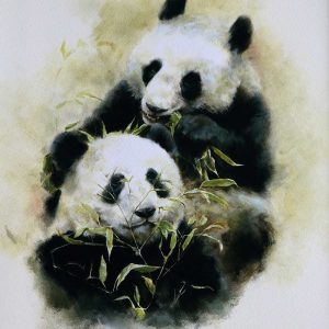 Buy this print of Pandas in aid of conservation