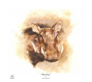 Buy this print in aid of conservation