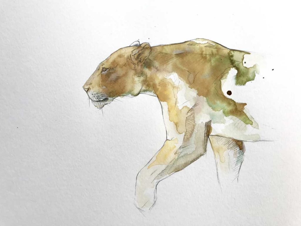 lioness coffee painting