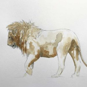 Buy this Coffee Original by Stephen Rew in aid of conservation